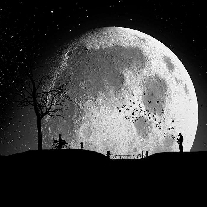 Серенада под луной. Автор: Hadi Malijani.