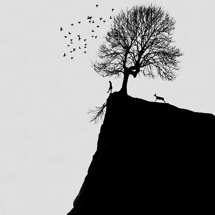 Опрометчивый шаг. Автор: Hadi Malijani.