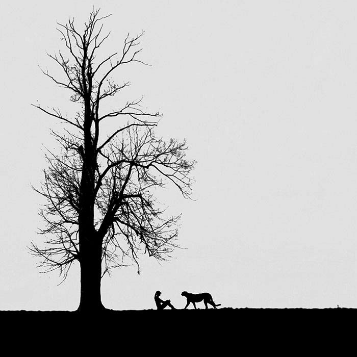 Дружба. Автор: Hadi Malijani.