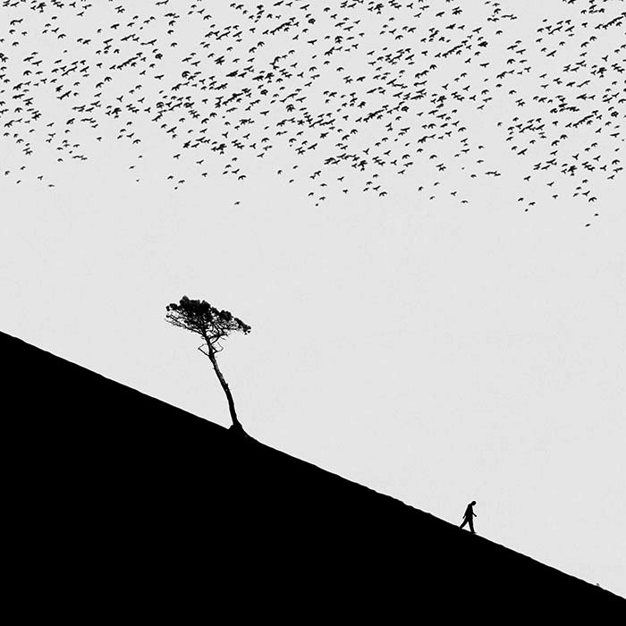По наклонной. Автор: Hadi Malijani.