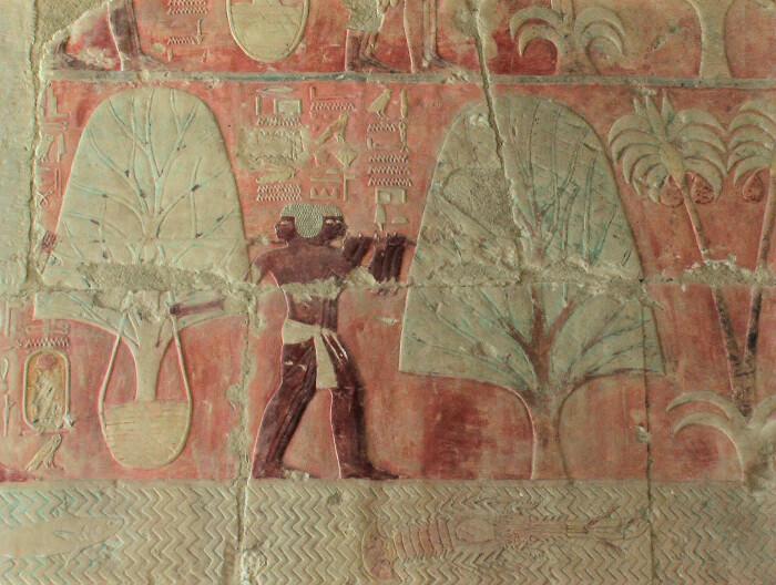 Раскрашенный рельеф из погребального храма Хатшепсут, показывающий экспедицию в Пунт. \ Фото: flickr.com.