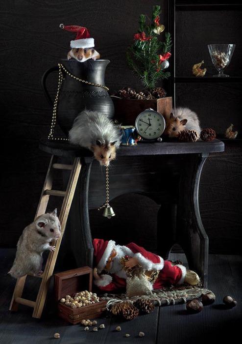 Как будили Деда Мороза. Автор фото: Елена Еремина.
