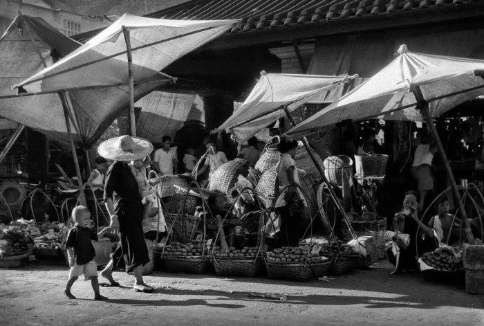 Танцующие навесы. Автор: Ho Fan.