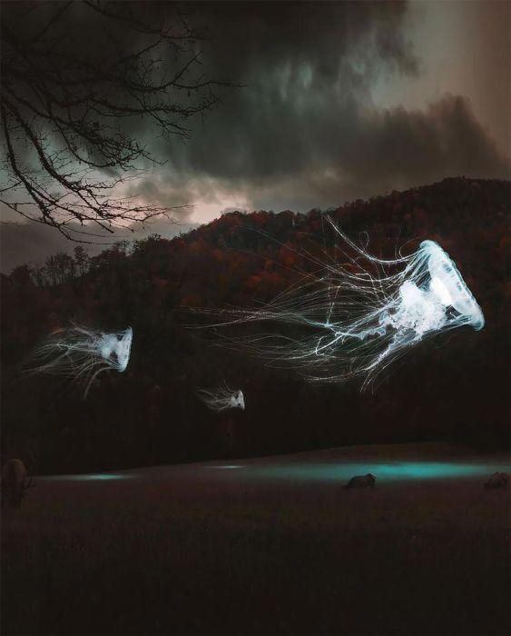 Медузы. Автор: Huseyin Sahin.