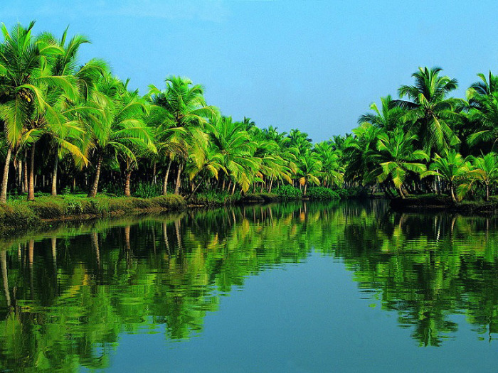 Живописный пейзаж Кералы. Индия.
