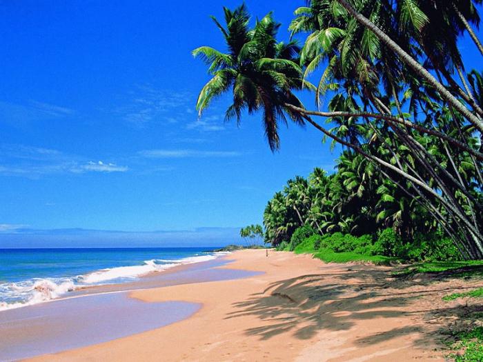 Пляж Палолем на Гоа. Индия.