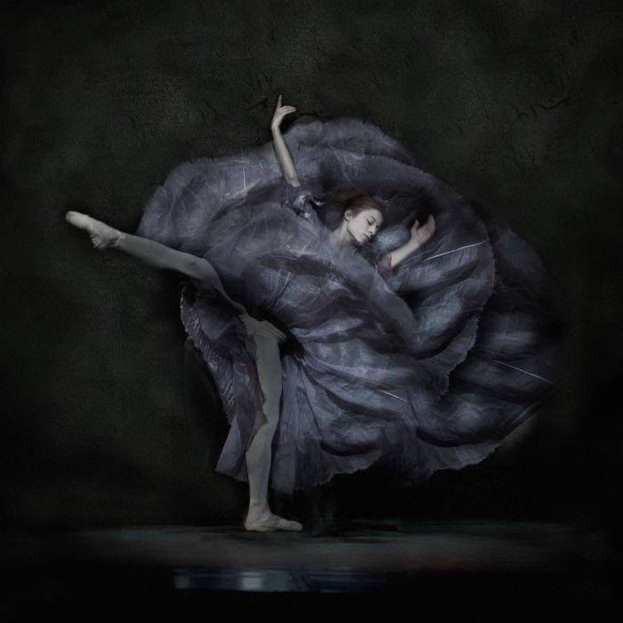 Чёрный цветок. Автор: Ingrid Bugge.