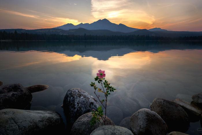 Озеро Аннет, Национальный парк Джаспер, Канада. Автор: Jack Bolshaw и Marta Kulesza.