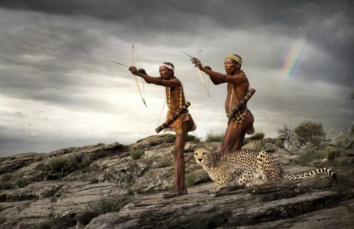 Они точно знают, как правильно себя вести в присутствие хищника. Автор фото: Jack Somerville.