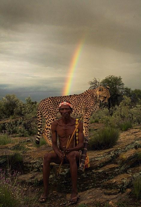Гепард Айко, не вызывает никакого страха у охотника. Автор фото: Jack Somerville.