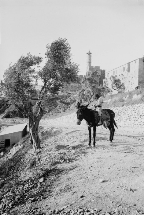 Иерусалим времён османской империи, 1900 год.