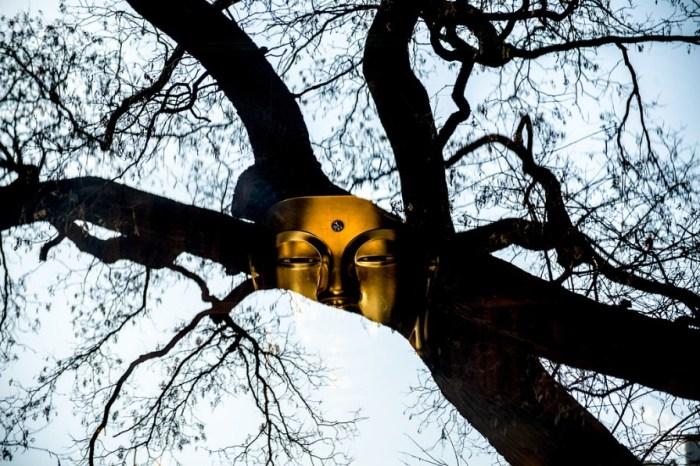 Золотая маска. Автор: Jodi Cobb.