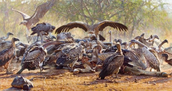 Крылатые хищники. Автор: John Banovich.