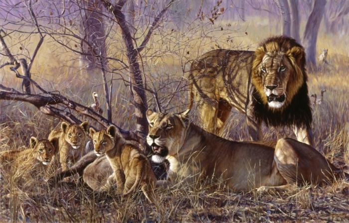 Львиное семейство. Автор: John Banovich.