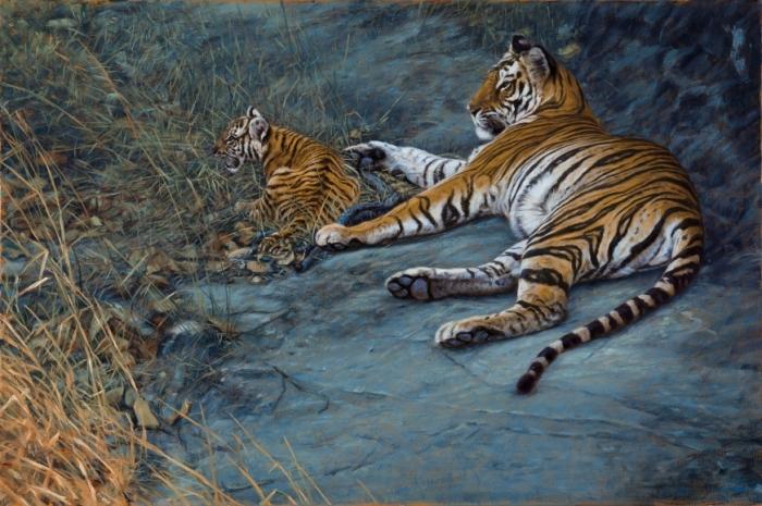 Тигры. Автор: John Banovich.