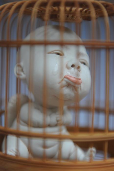 Клетка. Автор Johnson Tsang.