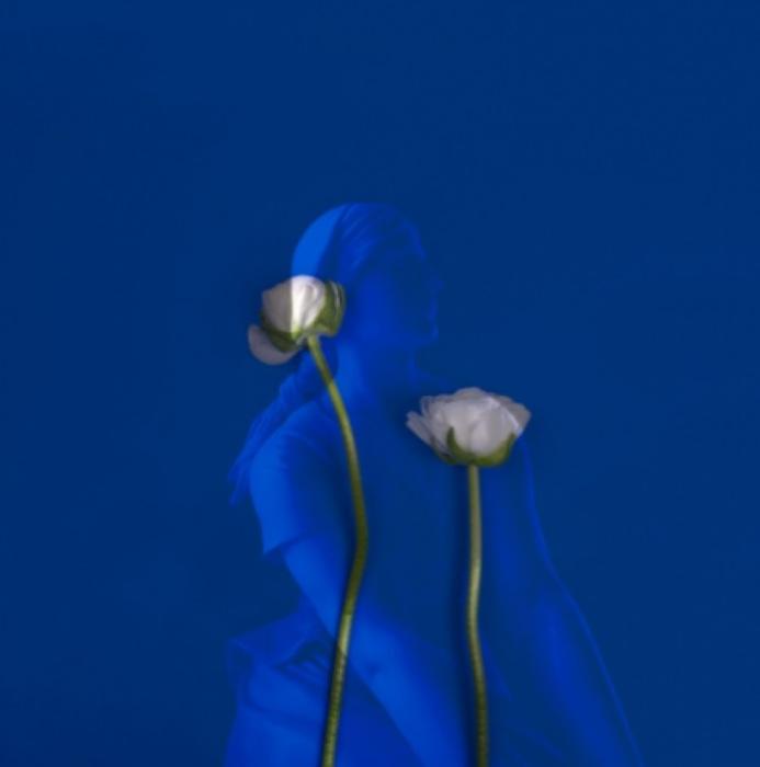 Первые цветы. Автор: Jorg Karg.