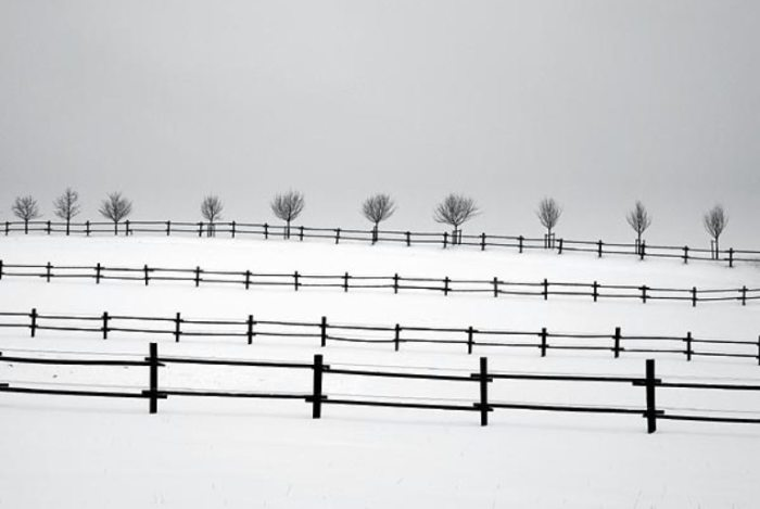 Частная собственность из серии «Снежные пейзажи». Автор: Josef Hoflehner.