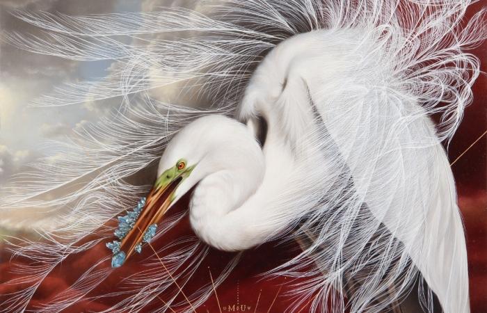 Волшебные портреты птиц. Автор: Josie Morway.