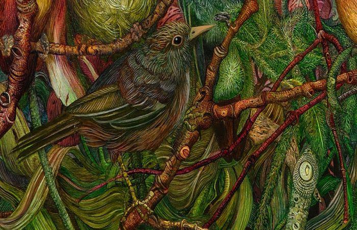 Райская птица. Автор: Judy Garfin.