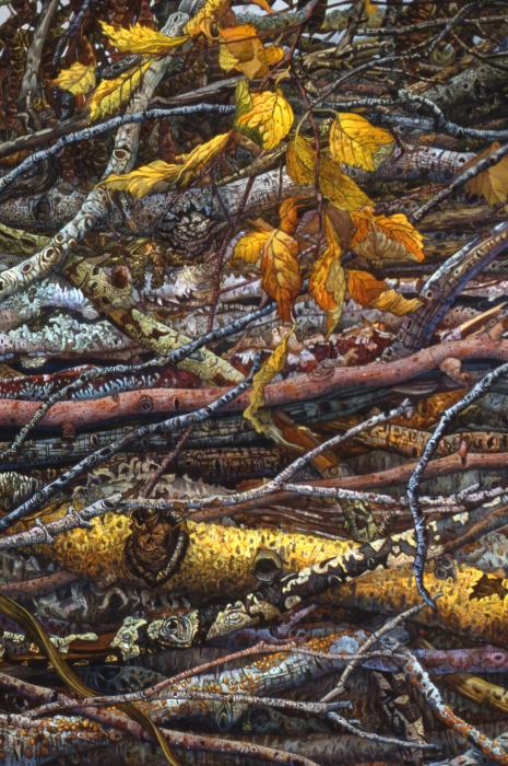 Веточка золотистых листьев. Автор: Judy Garfin.