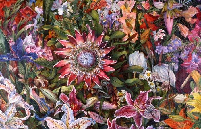 Цветочное поле. Автор: Judy Garfin.