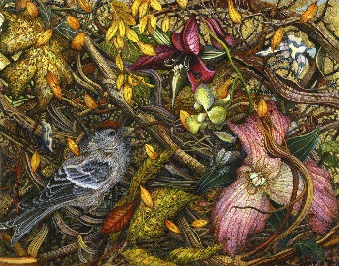 Сказочный лес. Автор: Judy Garfin.