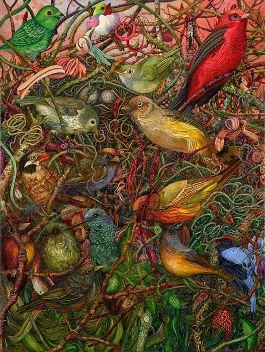 Райские птички. Автор: Judy Garfin.