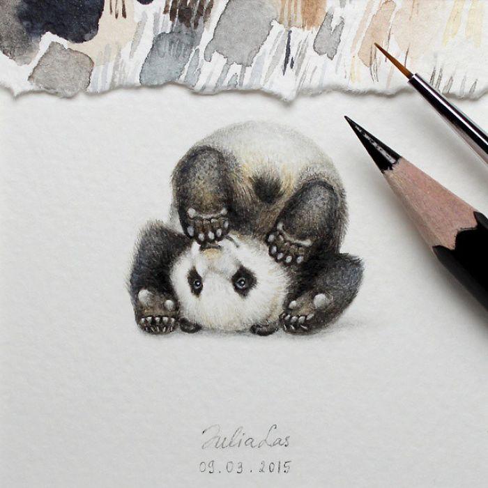 Панда. Автор: Julia Las.