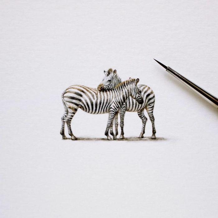 Зебры. Автор: Julia Las.