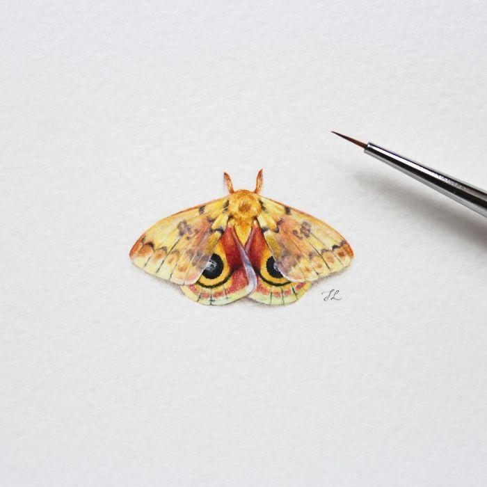 Бабочка. Автор: Julia Las.