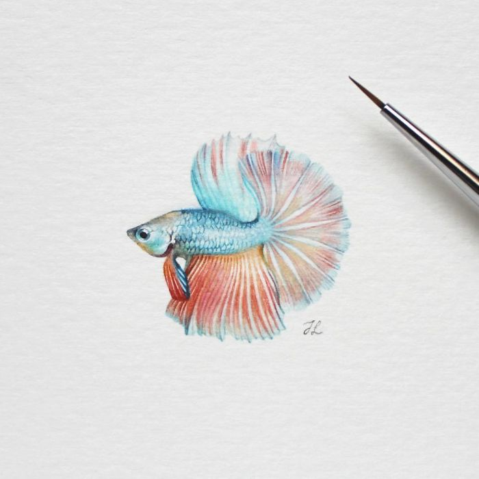 Рыбка. Автор: Julia Las.