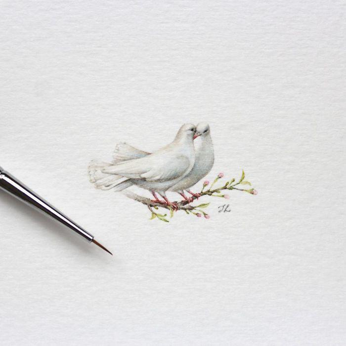 Пара белых голубей. Автор: Julia Las.