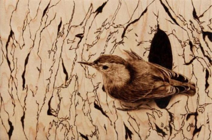 Птичка. Автор: Julie Bender.