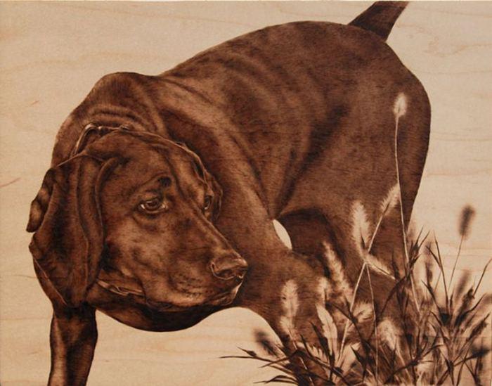 Прирождённый охотник. Автор: Julie Bender.