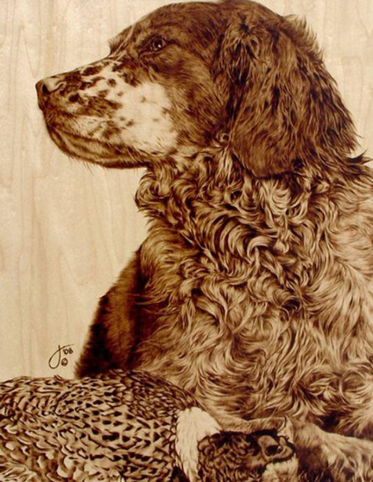 Собака - друг человека. Автор: Julie Bender.