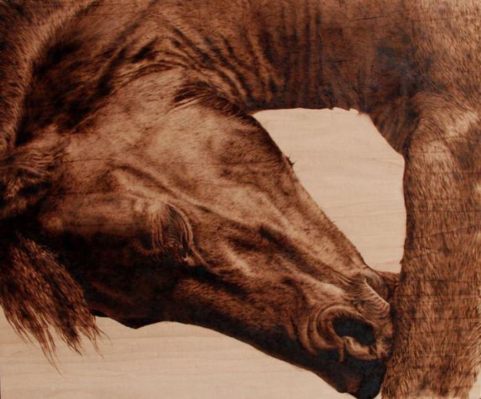 Лошадь. Автор: Julie Bender.