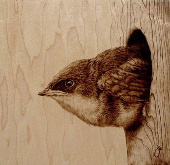 Жизнь на дереве. Автор: Julie Bender.