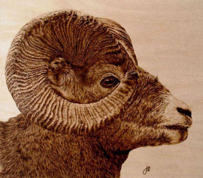 В мире животных. Автор: Julie Bender.