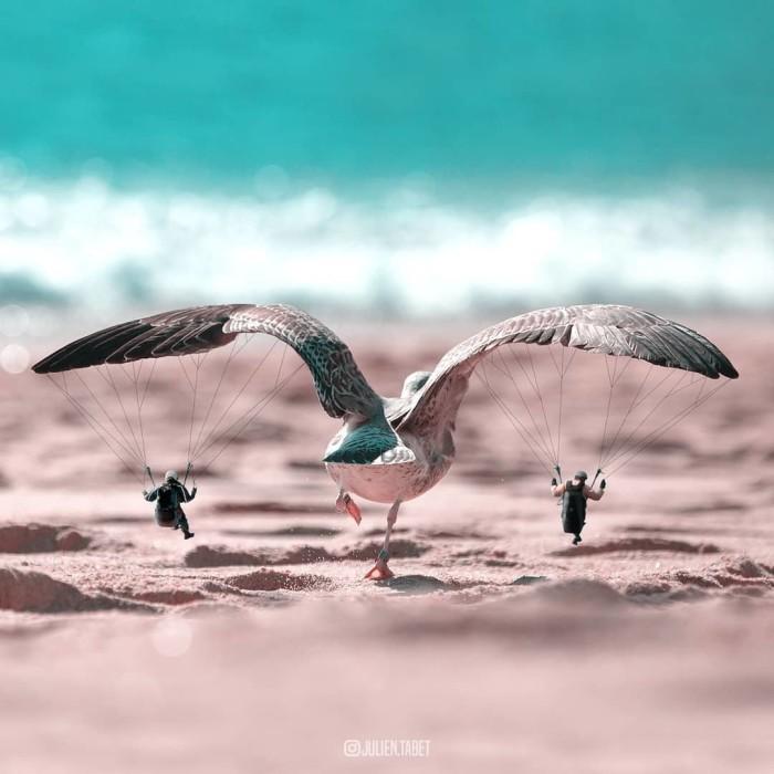 Осторожно, птица взлетает. Автор: Julien Tabet.