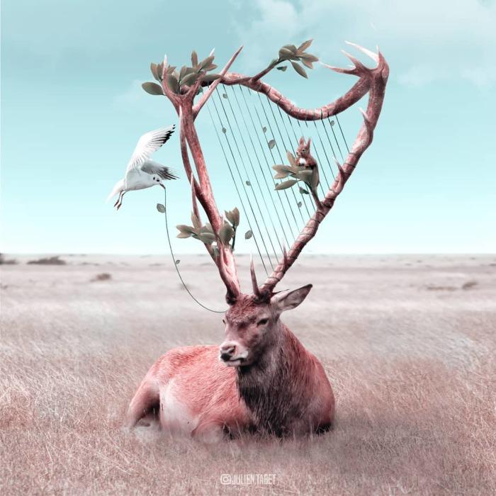 Симфония. Автор: Julien Tabet.