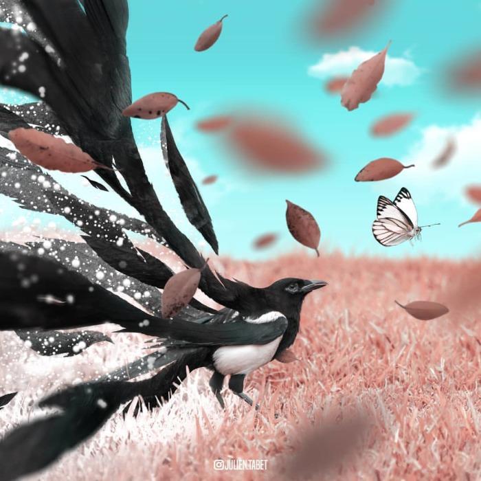Зима пришла. Автор: Julien Tabet.