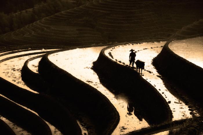 Красота китайской природы. Автор работ: Кен Коскела (Ken Koskela).