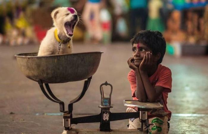 Трогательные снимки детей и животных от фотографов со всего мира.