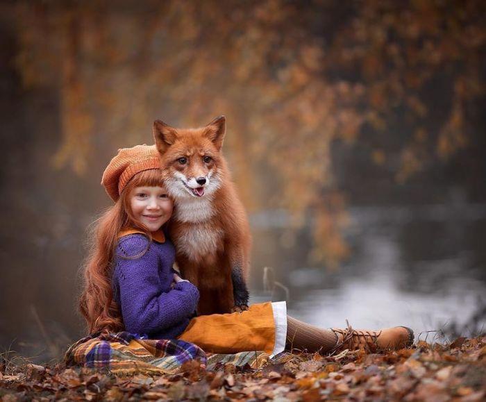Лисицы-сестрицы.