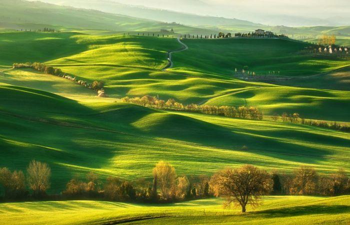 Зелёные равнины. Автор: Krzysztof Browko.