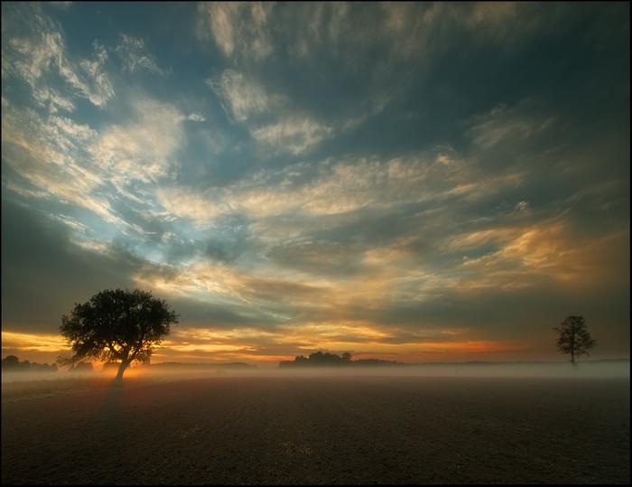 Ближе к небу. Автор: Krzysztof Browko.