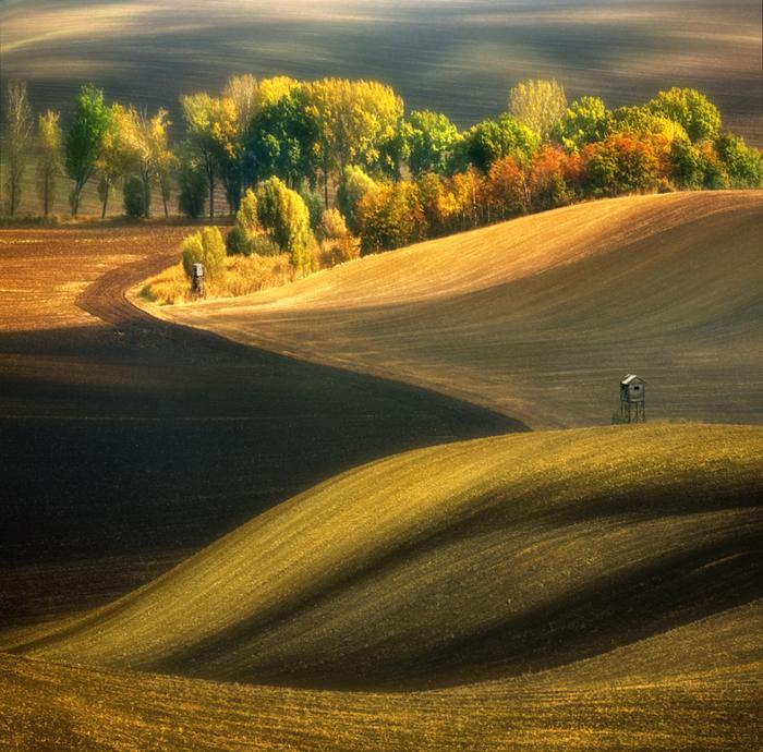 Осеннее настроение. Автор: Krzysztof Browko.