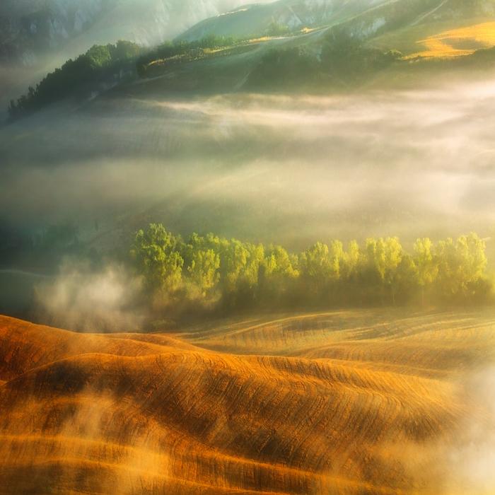 Туман. Автор: Krzysztof Browko.
