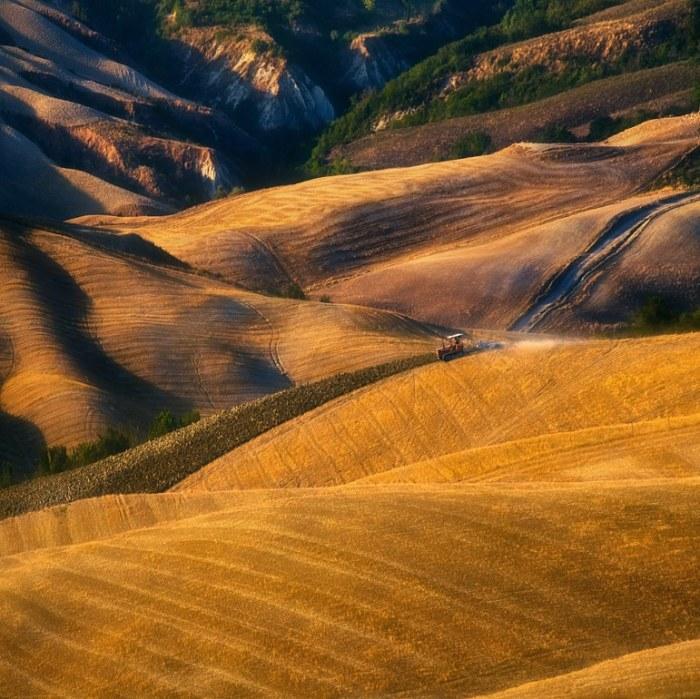 Трактор в поле. Автор: Krzysztof Browko.